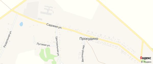 Садовая улица на карте села Прокудино с номерами домов