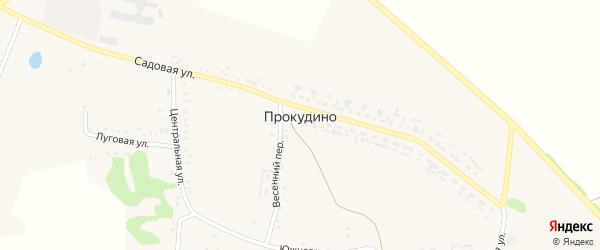 Луговая улица на карте села Прокудино с номерами домов