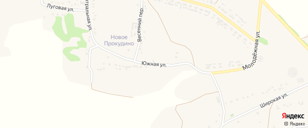 Южная улица на карте села Прокудино с номерами домов