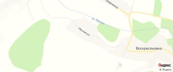 Карта села Павловки в Белгородской области с улицами и номерами домов