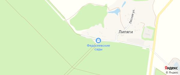Лесной переулок на карте хутора Липяги с номерами домов