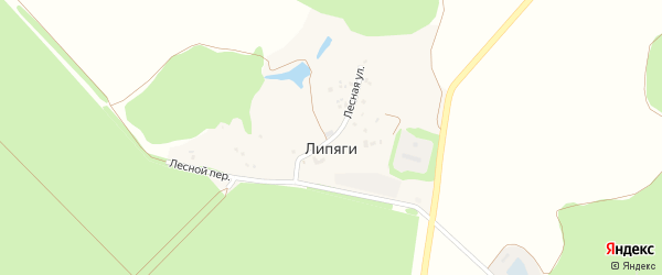 Лесная улица на карте хутора Липяги с номерами домов