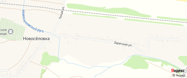 Заречная улица на карте села Новоселовки с номерами домов