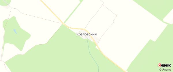 Карта Козловского поселка в Белгородской области с улицами и номерами домов