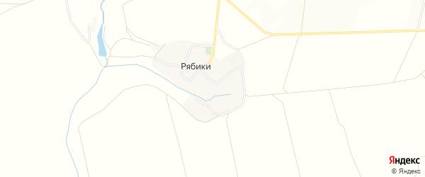 Карта хутора Рябики в Белгородской области с улицами и номерами домов