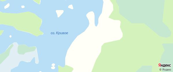 Карта поселка Янгоры в Архангельской области с улицами и номерами домов