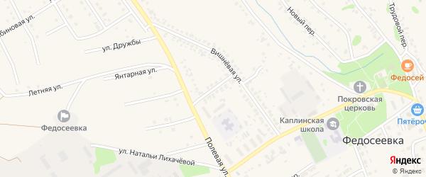 1-й Вишневый переулок на карте села Федосеевки с номерами домов