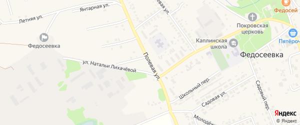 Полевая улица на карте села Федосеевки с номерами домов