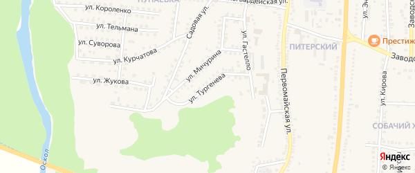 Улица Тургенева на карте поселка Чернянка с номерами домов