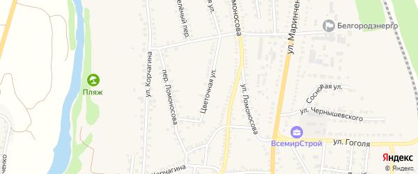 Цветочная улица на карте поселка Чернянка с номерами домов