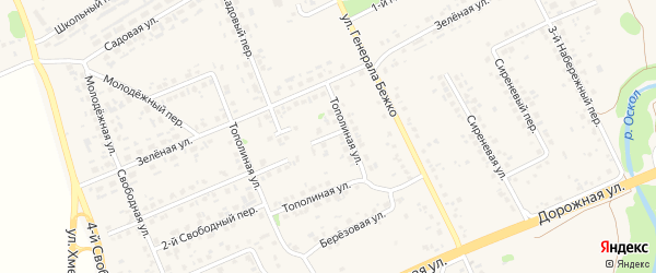 3-й Тополиный переулок на карте села Федосеевки с номерами домов