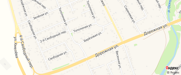 Березовая улица на карте села Федосеевки с номерами домов
