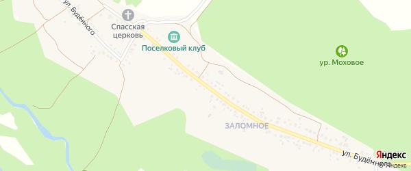 Улица Буденного на карте села Ютановки с номерами домов