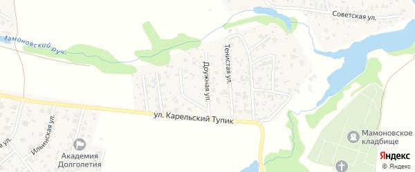 Дорожная улица на карте садового некоммерческого товарищества Дружбы с номерами домов
