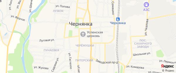 Карта поселка Чернянка в Белгородской области с улицами и номерами домов