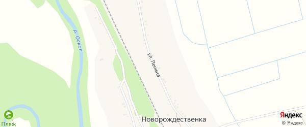 Улица Ленина на карте села Новорождественки с номерами домов