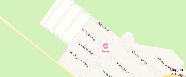Улица Пушкина на карте села Ниновки с номерами домов
