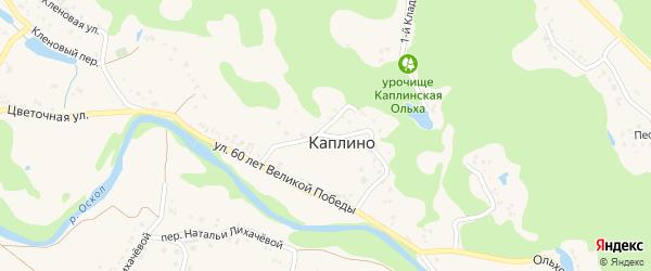 Круговая улица на карте села Каплино с номерами домов
