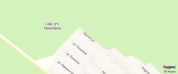 Лесная улица на карте села Ниновки с номерами домов