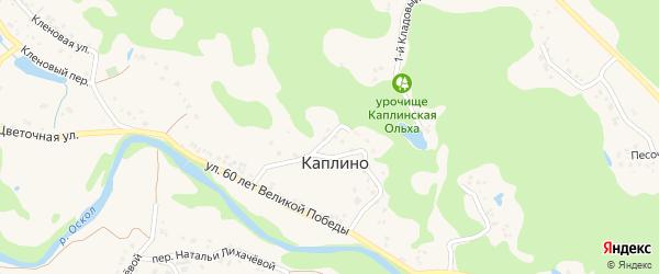 Круговой переулок на карте села Каплино с номерами домов