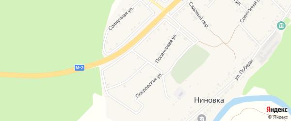 Центральная улица на карте села Ниновки с номерами домов