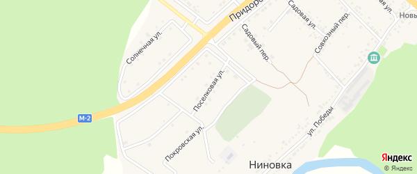 Поселковая улица на карте села Ниновки с номерами домов