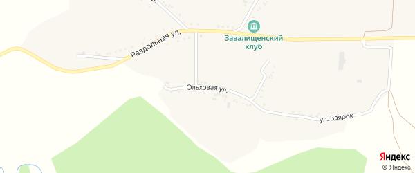 Ольховая улица на карте села Завалищено с номерами домов