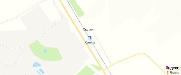 Карта станции Холки в Белгородской области с улицами и номерами домов