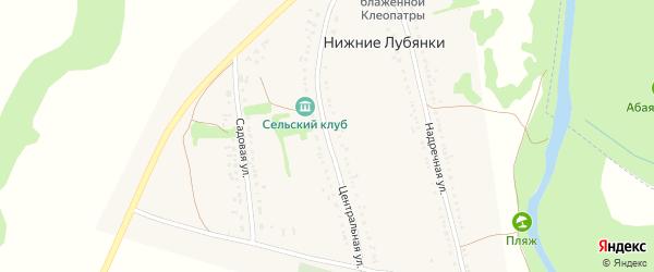 Центральная улица на карте села Нижние Лубянки с номерами домов