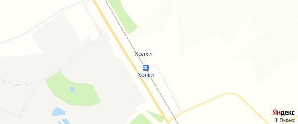 Карта хутора Холки в Белгородской области с улицами и номерами домов