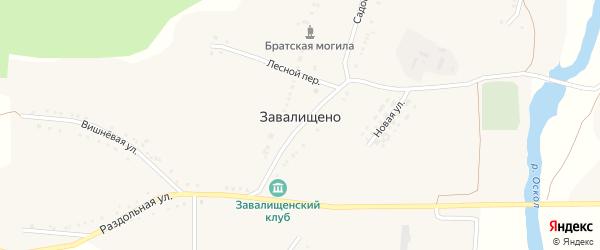 Раздольная улица на карте села Завалищено с номерами домов