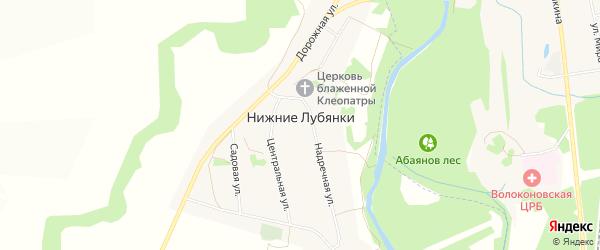 Карта села Нижние Лубянки в Белгородской области с улицами и номерами домов