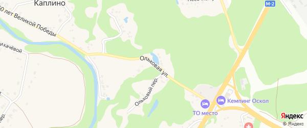 Ольховая улица на карте села Каплино с номерами домов