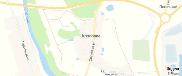 Сосновая улица на карте села Козловки с номерами домов