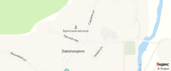 Садовая улица на карте села Завалищено с номерами домов