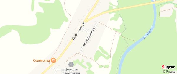 Молодежная улица на карте села Нижние Лубянки с номерами домов