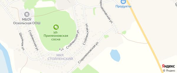 Старолеоновская улица на карте села Леоновки с номерами домов