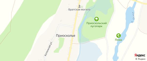 Центральная улица на карте села Приосколье с номерами домов
