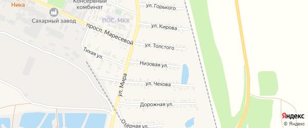Низовая улица на карте поселка Пятницкого с номерами домов