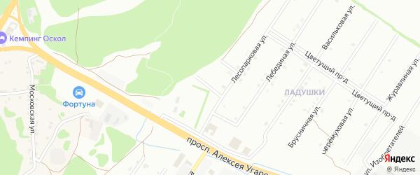 2-й Лесопарковый переулок на карте Старого Оскола с номерами домов