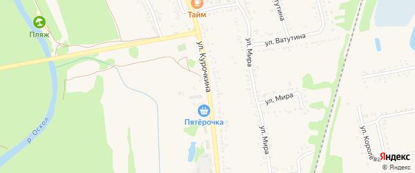 Улица Курочкина на карте поселка Волоконовки с номерами домов