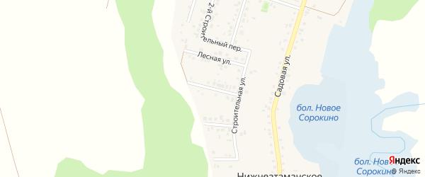 1-й Лесной переулок на карте Нижнеатаманского села с номерами домов