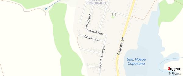 Лесная улица на карте Нижнеатаманского села с номерами домов