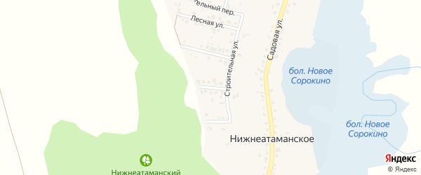 2-й Лесной переулок на карте Нижнеатаманского села с номерами домов