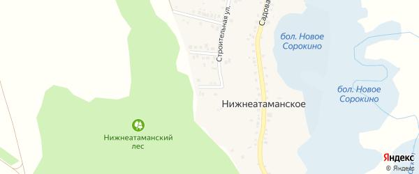 3-й Лесной переулок на карте Нижнеатаманского села с номерами домов