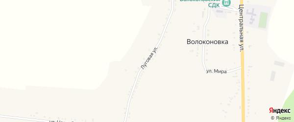 Луговая улица на карте села Волоконовки с номерами домов