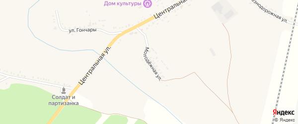 Молодежная улица на карте села Окуни с номерами домов