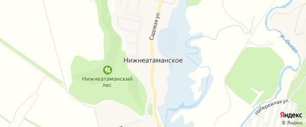 Карта Нижнеатаманского села в Белгородской области с улицами и номерами домов