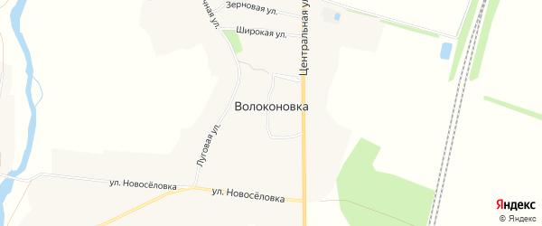 Карта села Волоконовки в Белгородской области с улицами и номерами домов