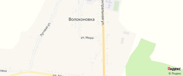 Улица Мира на карте села Волоконовки с номерами домов